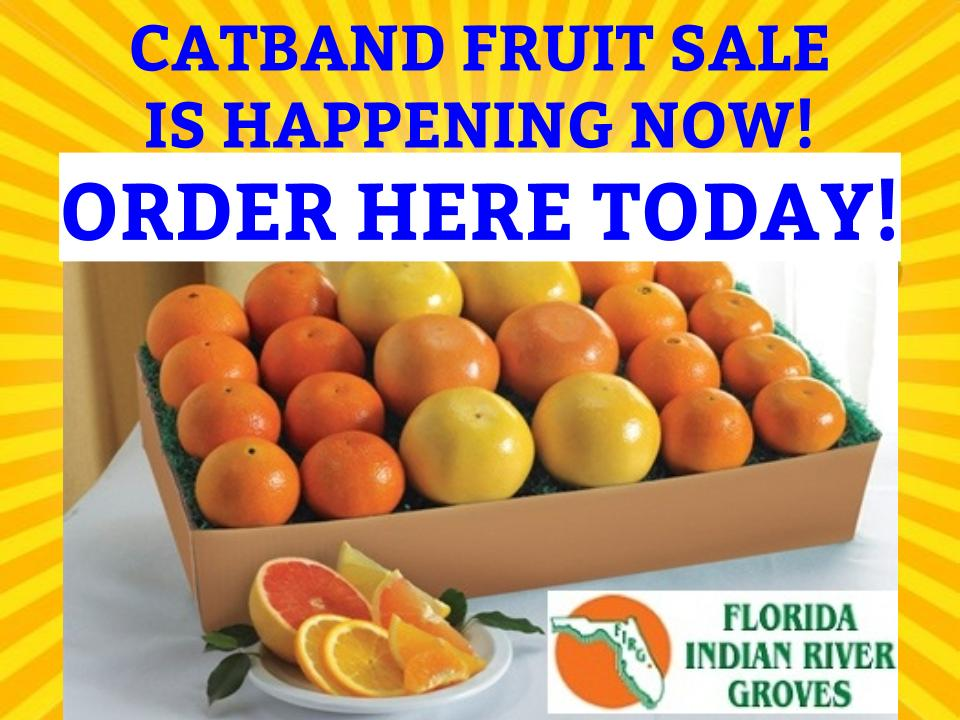catband-fruit-sale-banner