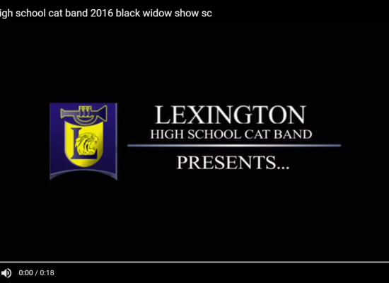 UNLEASH THE BLACK WIDOW ON THEM IN BLYTHEWOOD, CATBAND!